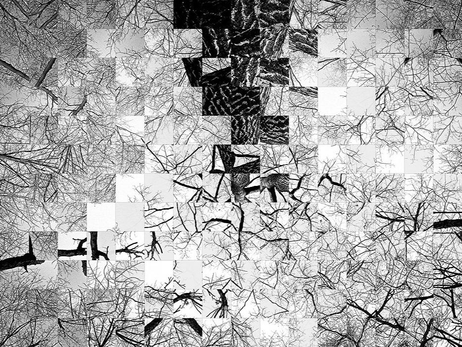 /the-art-of-quantum-data-version-11-5q1v366s feature image