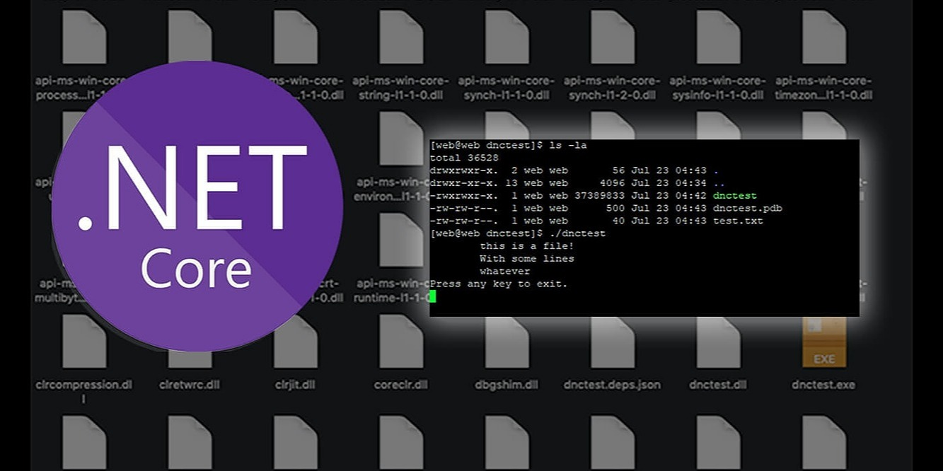 /creating-trimmed-self-contained-executables-in-net-core-hm52a38qy feature image
