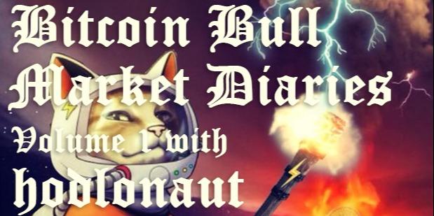 /bitcoin-bull-market-diaries-volume-1-with-hodlonaut-ut1a643row feature image