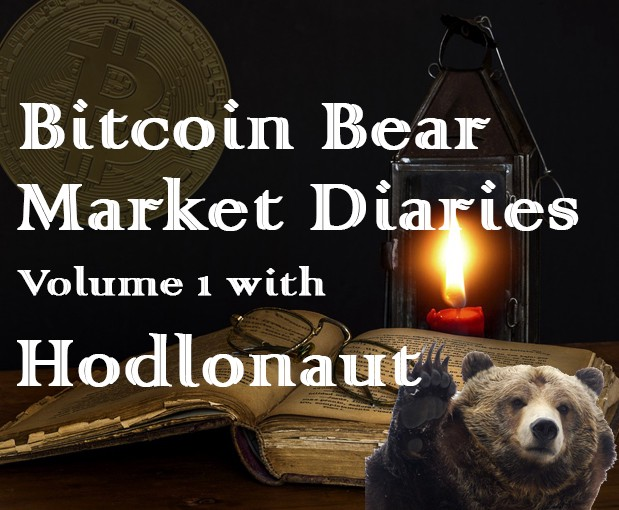 /bitcoin-bear-market-diaries-volume-1-with-hodlonaut-124c4467b05e feature image