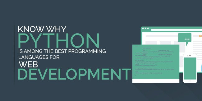 /how-python-applications-are-revolutionizing-web-app-development-6955t30pi feature image