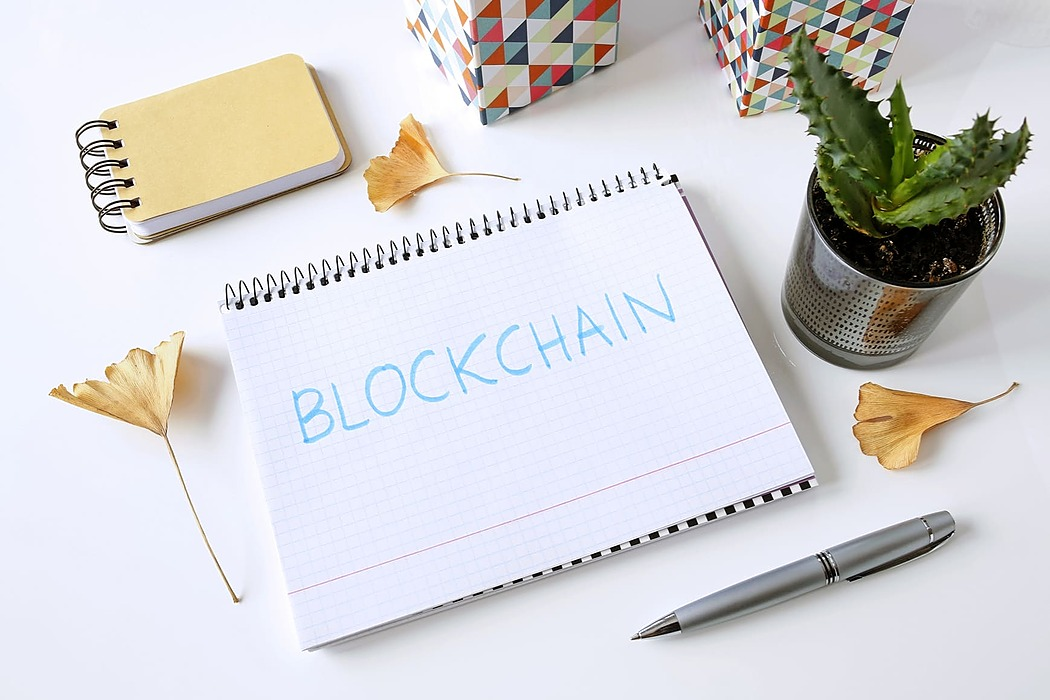 /how-to-choose-a-blockchain-platform-to-develop-your-project-8q3234q7 feature image