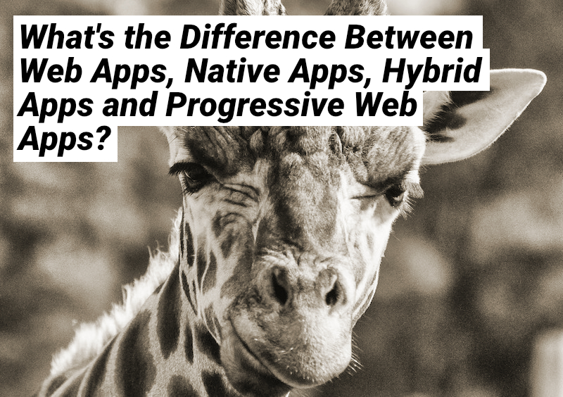 /what-is-the-difference-between-web-apps-native-apps-hybrid-apps-and-progressive-web-apps-py19n2gdi feature image