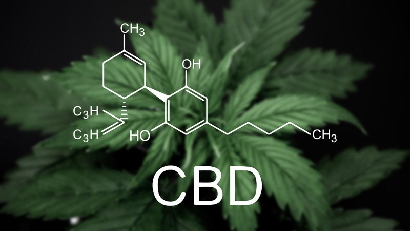 /the-best-cbd-capsules-for-sleep-anxiety-pain-and-insomnia-7024g22a0 feature image