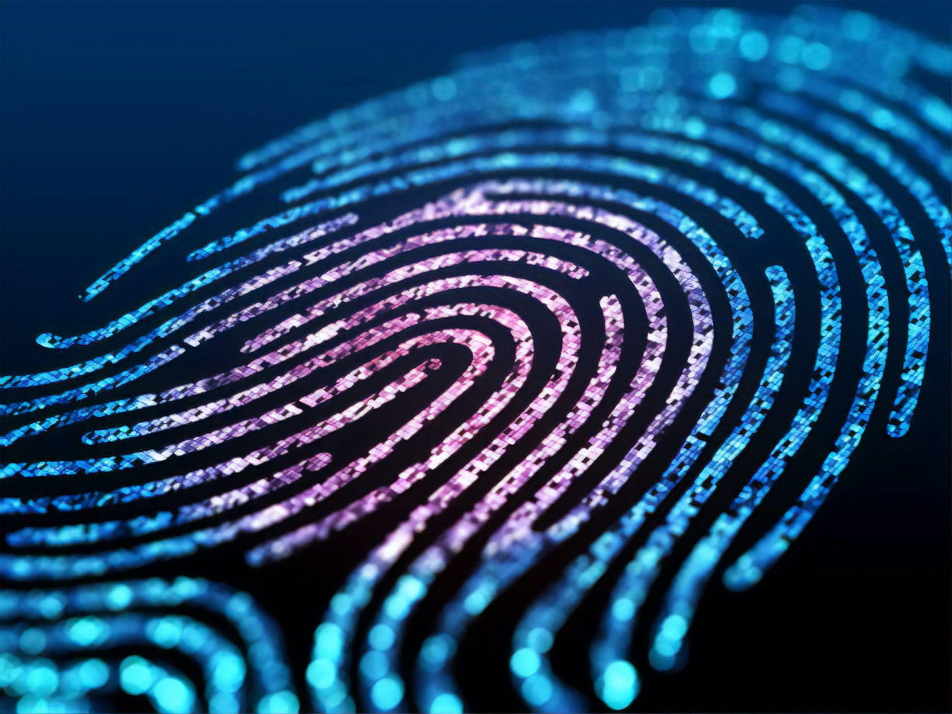 /data-fingerprinting-in-javascript-k0c23ygz feature image