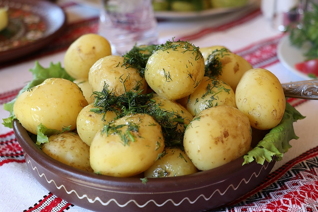 /traditional-ukrainian-food-beginners-guide-6w27329i feature image