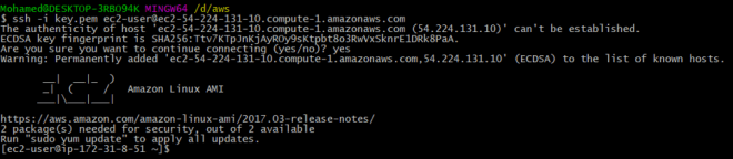 Running Docker on AWS EC2 - By