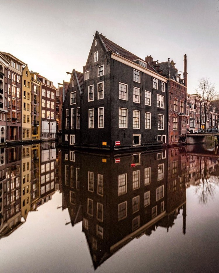 /on-worlds-security-token-offering-epicenter-the-netherlands-1561938cf1eb feature image