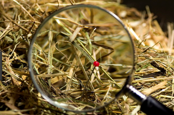 How We Can Find the Needle in a Haystack, Together   Hacker Noon