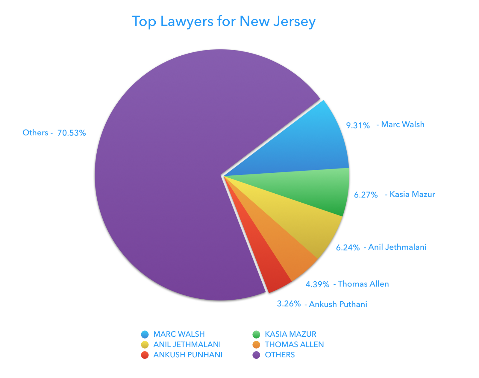 A detailed analysis of H-1B visa lawyers - By