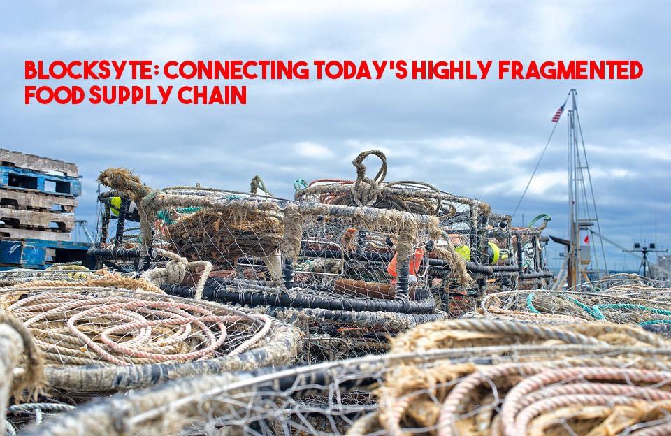 /blocksyte-harmonizing-todays-highly-fragmented-food-supply-chain-e713e305002b feature image