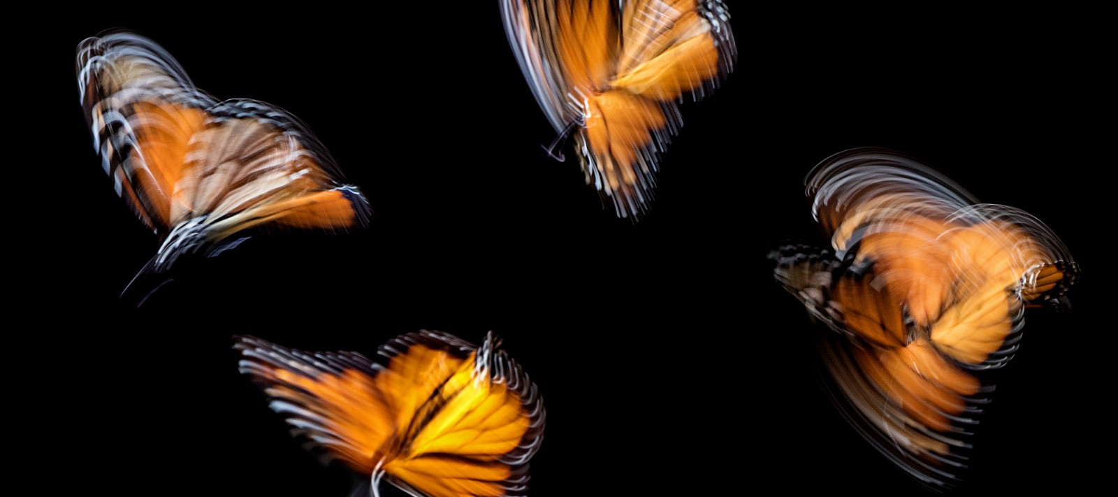 /the-good-and-the-bad-of-flutter-app-development-45f27b1caa36 feature image