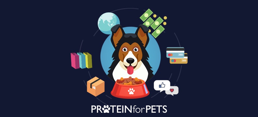 /how-we-built-an-800k-per-month-e-commerce-application-for-pet-food-27d20fbccfb2 feature image