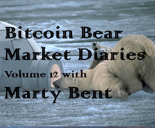 /bitcoin-bear-market-diaries-volume-12-marty-bent-20a4df0e224d feature image