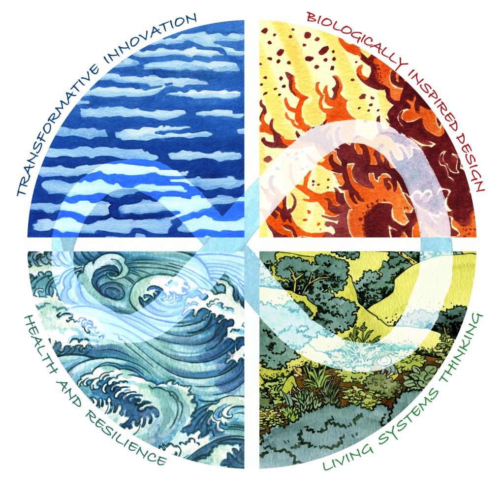 /musings-on-the-regeneration-rising-designing-regenerative-cultures-599032caa63 feature image