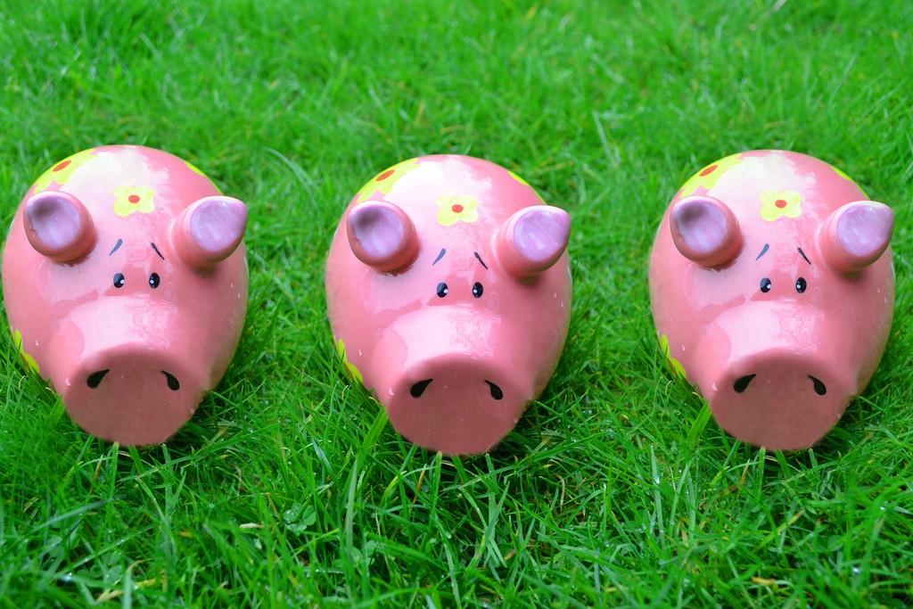 /three-little-piggy-banks-371b0ca2397b feature image