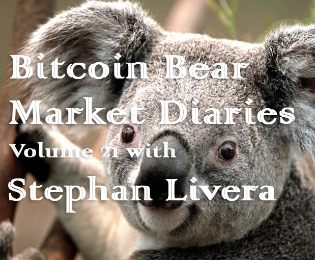/bitcoin-bear-market-diaries-volume-21-stephan-livera-ef4bbc75bd9 feature image