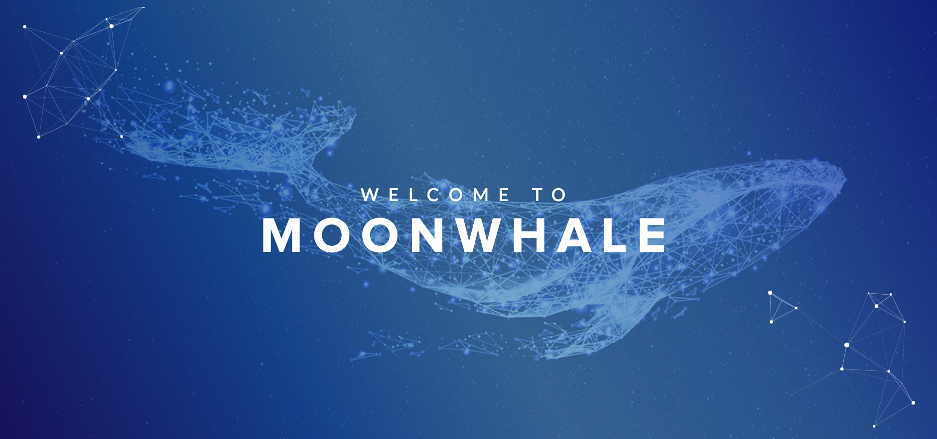 /moonwhale-blockchain-ventures-driving-crypto-global-adoption-29ac9f6271ff feature image
