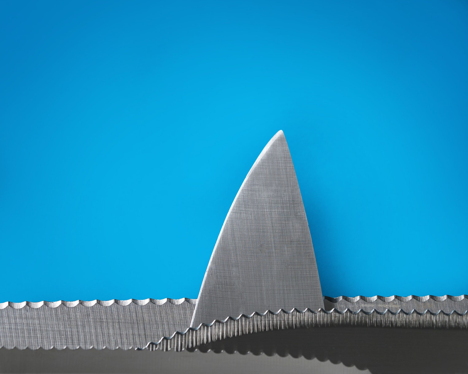 /just-give-me-a-sharp-knife-google-9b20c782abe9 feature image