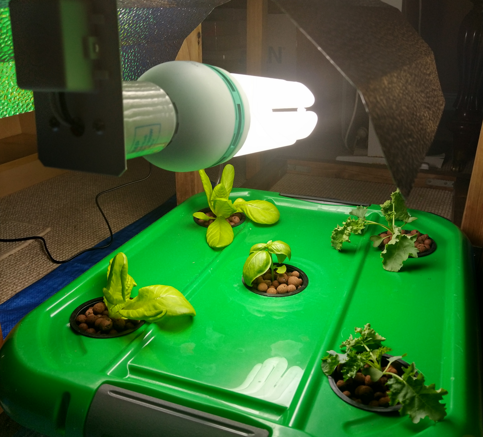 The $300 Lettuce: Building a Smart Garden - By Darcy Sanders