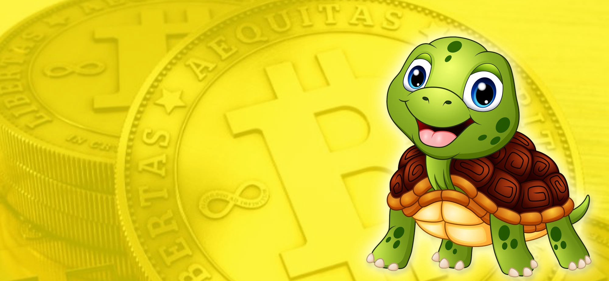 My Super Secret Crypto Turtle Strategy Revealed - By