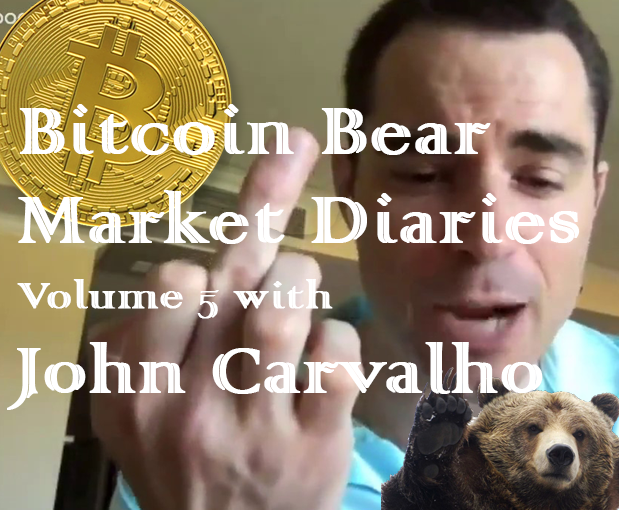 /bitcoin-bear-market-diaries-volume-5-john-carvalho-bfd32fc6ae8f feature image