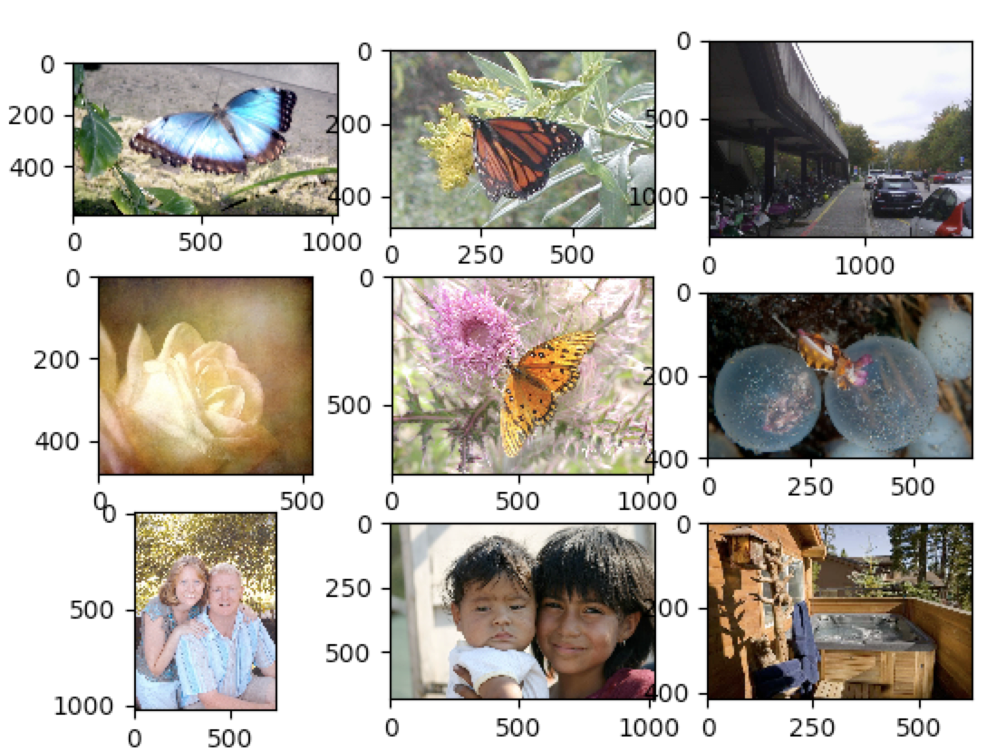 One Class Classification for Images with Deep features - By