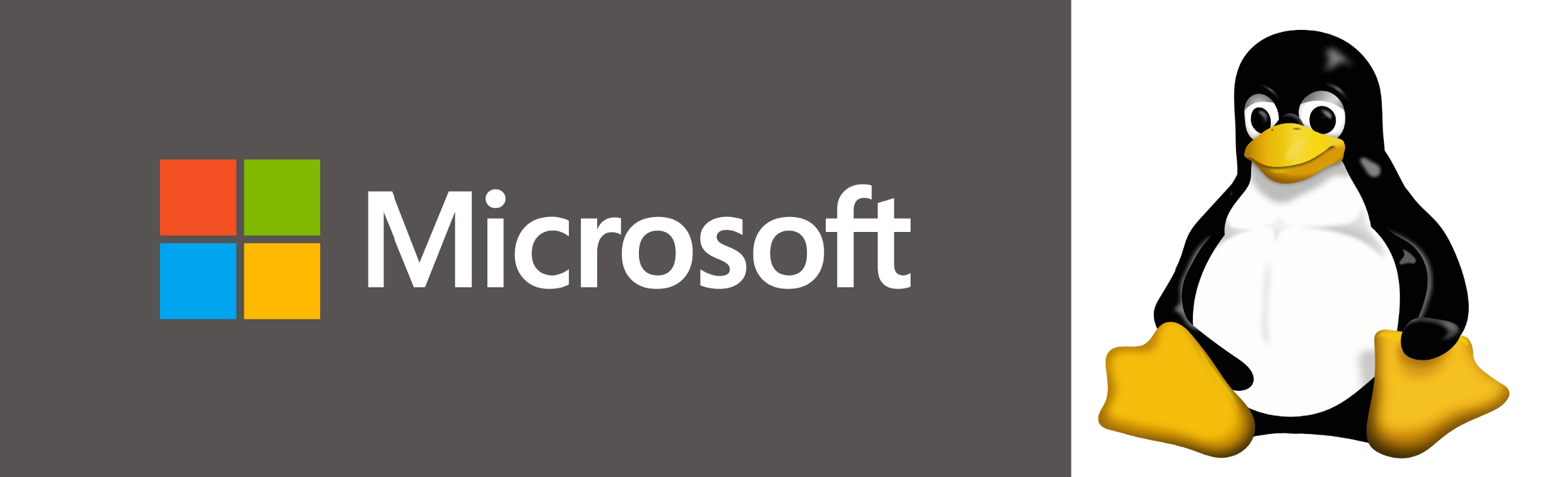 /did-microsoft-really-just-open-source-all-its-patents-3e419ae1a439 feature image