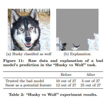 Dogs, Wolves, Data Science, and Why Machines Must Learn Like