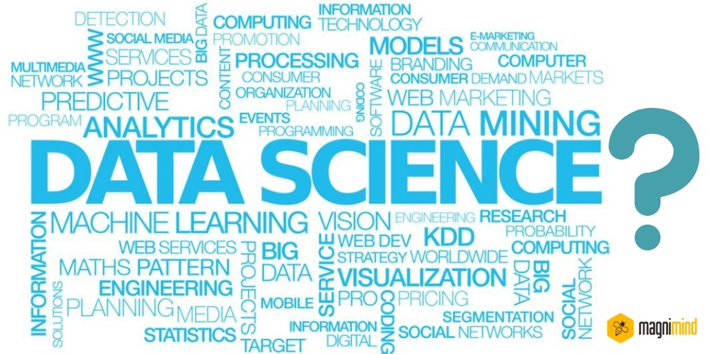 Learning Data Science In 6 Weeks — How You Can Do It? - By Magnimind
