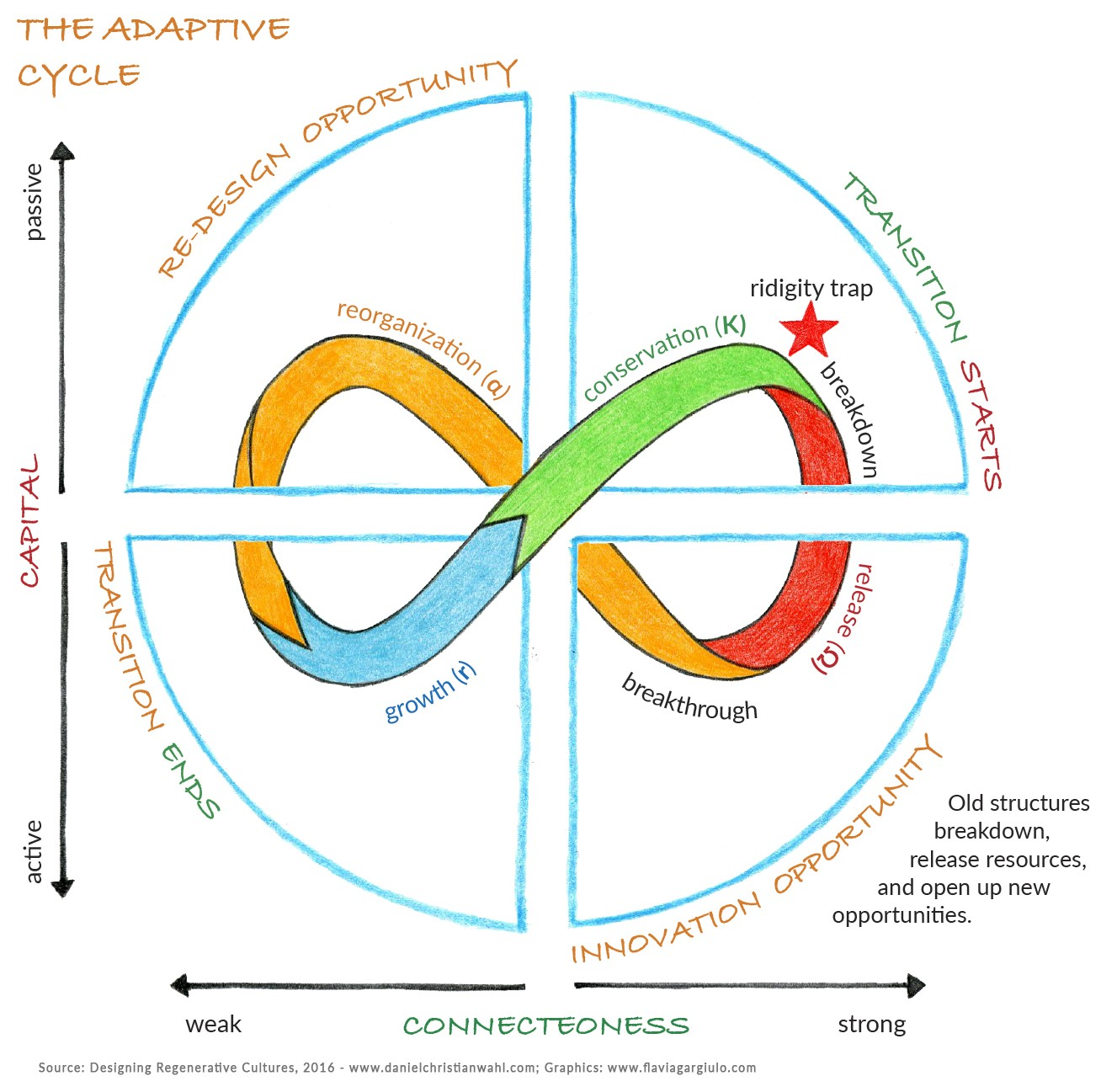 /the-adaptive-cycle-panarchy-as-dynamic-maps-for-resilience-thinking-793fad49de5e feature image