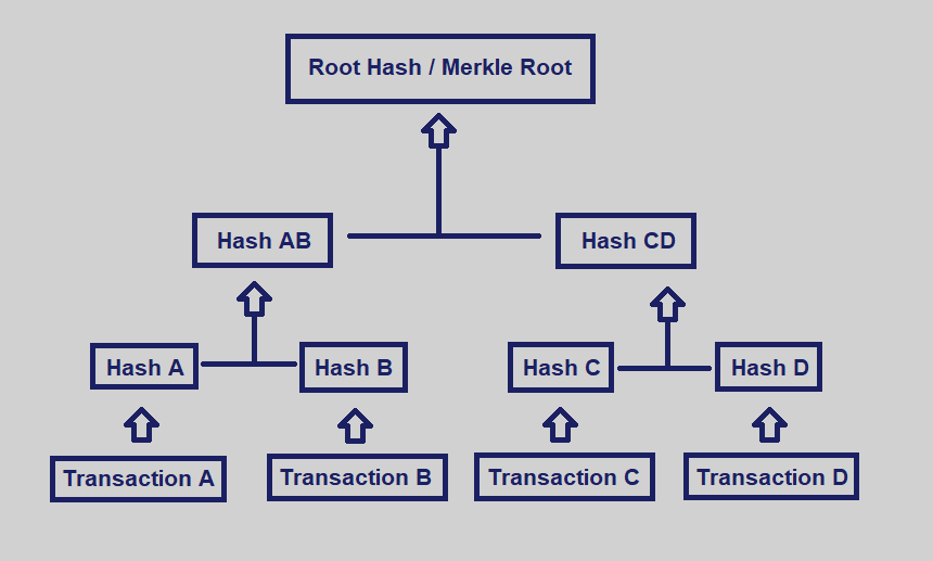 Merkle Trees - By Shaan Ray