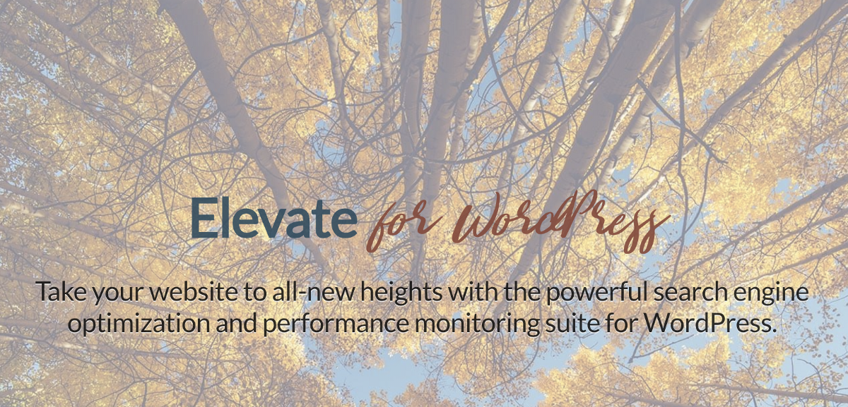 /elevate-the-newest-search-engine-optimization-and-performance-enhancement-plugin-for-wordpress-4d2f5168ae2f feature image