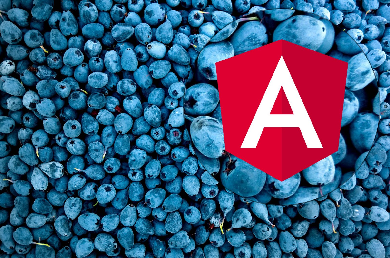 Angular Digest (26 January — 7 March) - By