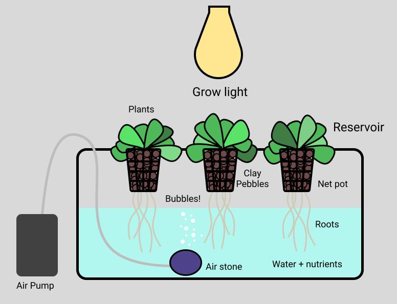 /the-300-lettuce-building-a-smart-garden-c048c0e1a51 feature image