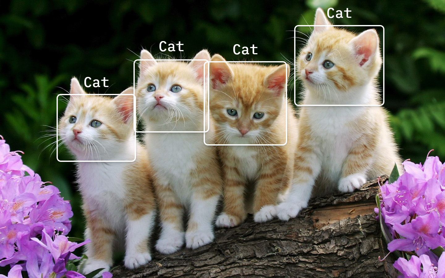 /tensorflow-js-real-time-object-detection-in-10-lines-of-code-baf15dfb95b2 feature image