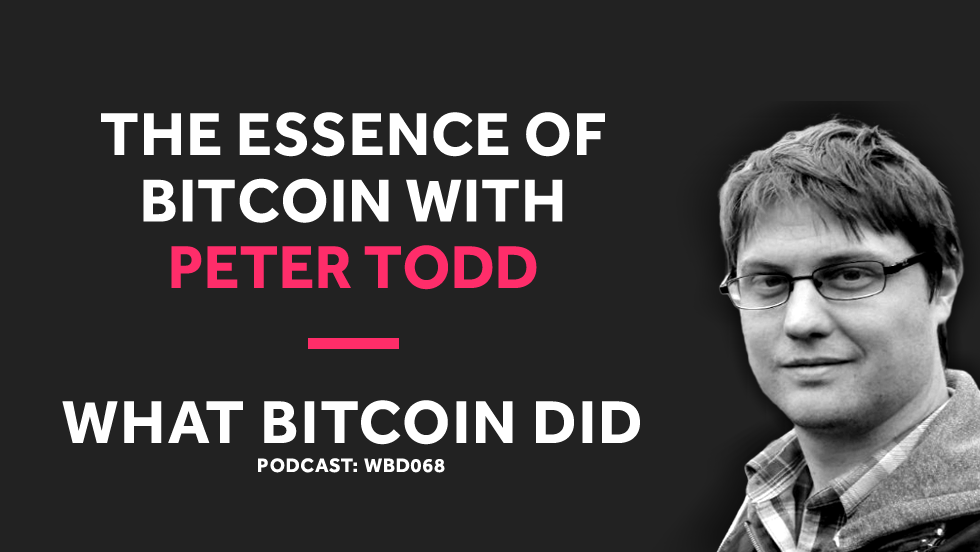 /peter-todd-on-the-essence-of-bitcoin-b8d0c6d16f43 feature image