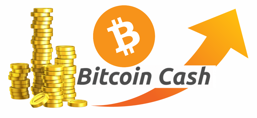 Image result for bitcoin cash