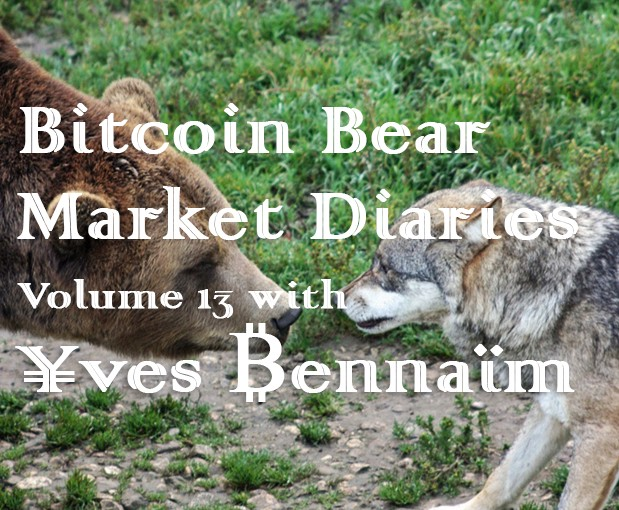 /bitcoin-bear-market-diaries-volume-13-yves-bennaim-48c9ddc59c43 feature image