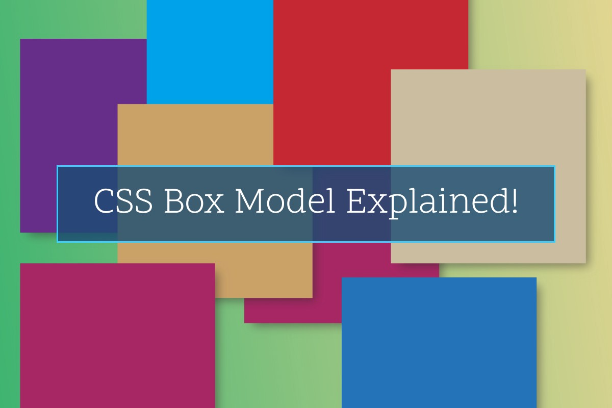 Css Box Model For Beginner Unlocking The Magic Of Css By