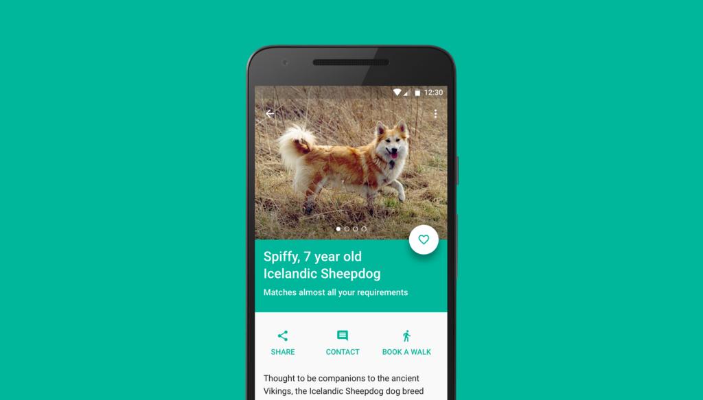 /pet-adoption-8798b14af117 feature image