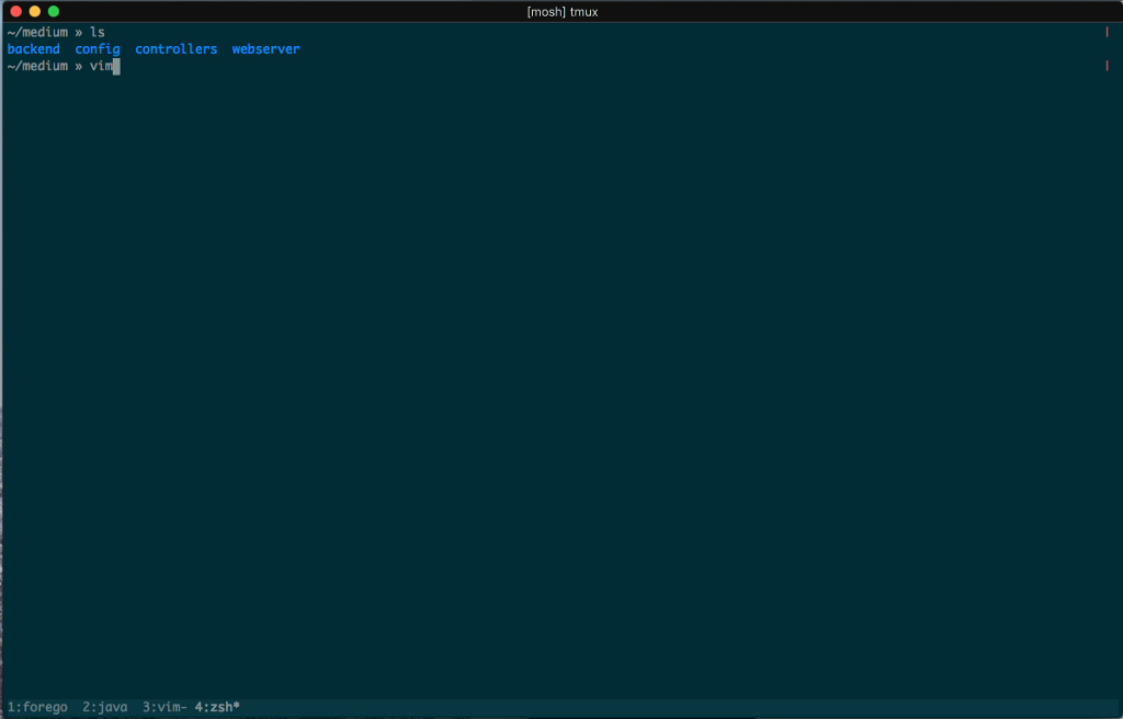 /why-you-should-be-developing-on-the-command-line-e3353bbdaf51 feature image