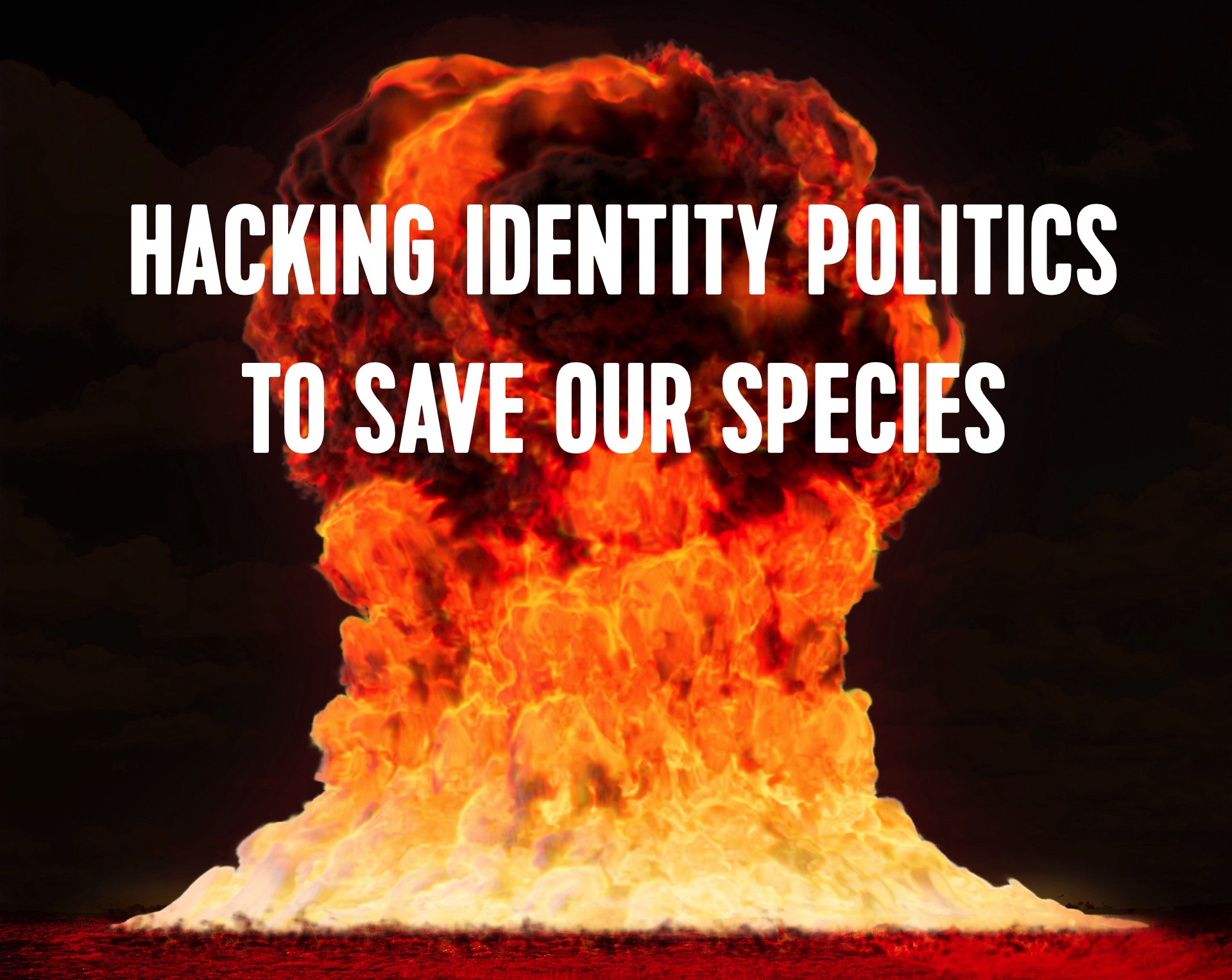 Hacking Identity (Politics) - By Nick Seneca Jankel