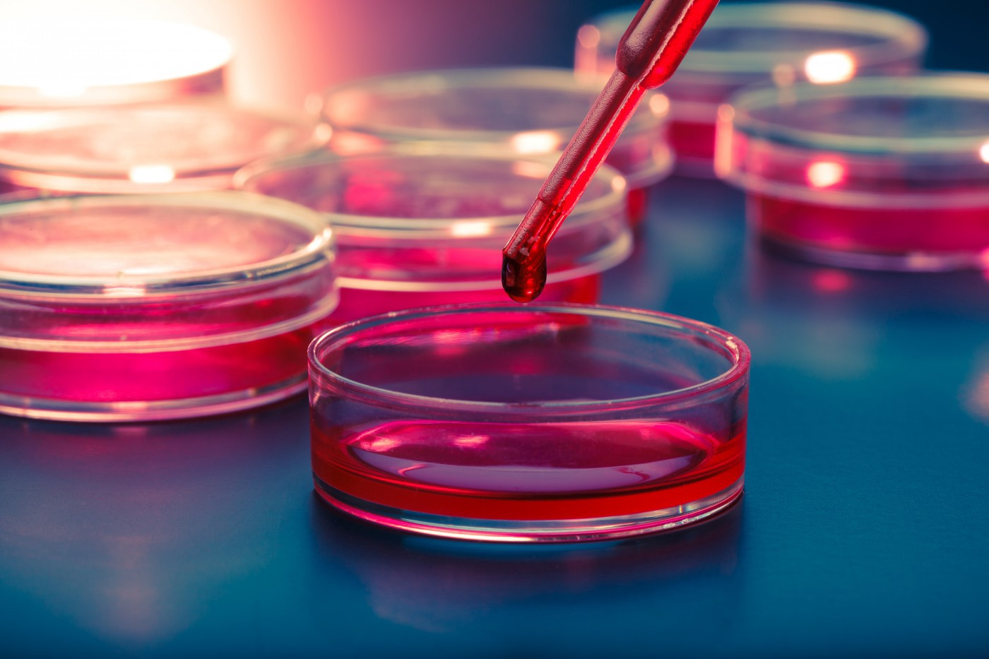 /stem-cell-therapy-triggering-human-bodys-ability-to-heal-itself-fe7aeceb9465 feature image