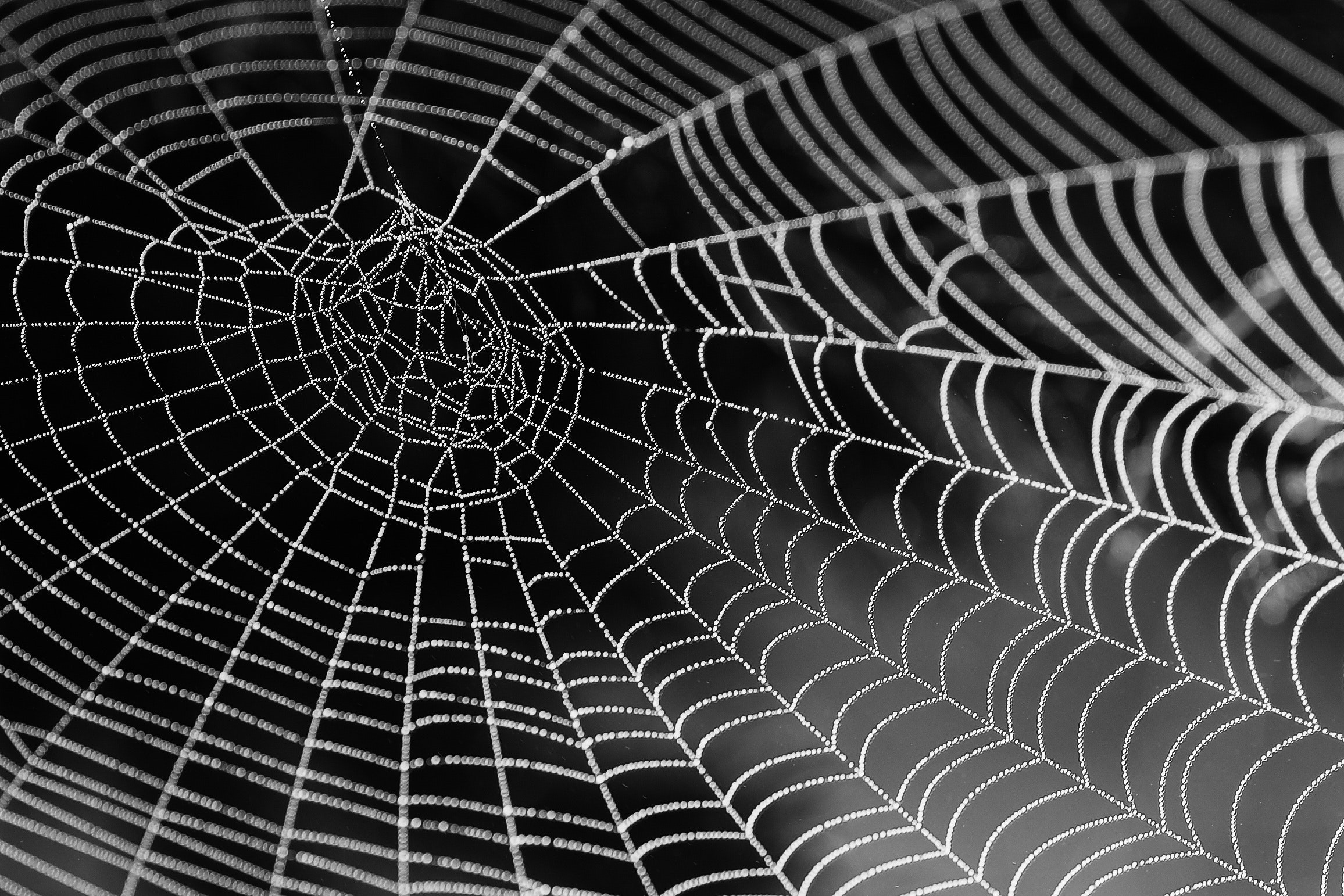 /the-crypto-spider-web-thesis-a69bdba0678 feature image