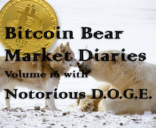 /bitcoin-bear-market-diaries-volume-16-notorious-d-o-g-e-d6810c083e0c feature image