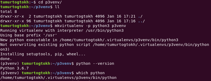 Developing Python application: Virtual environment - By