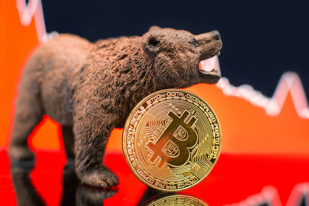 /an-objective-argument-to-end-the-cryptocurrency-bear-market-12125b3d9111 feature image