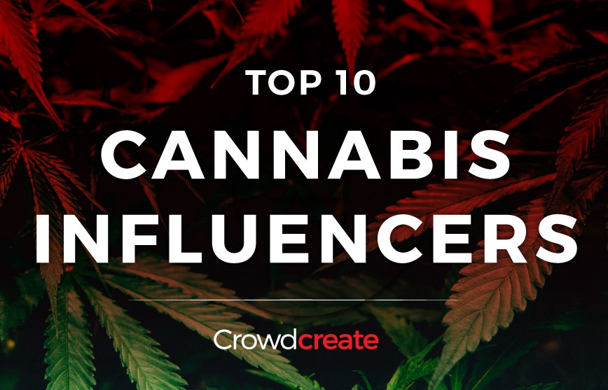 /top-10-cannabis-influencers-d4545f38f70f feature image
