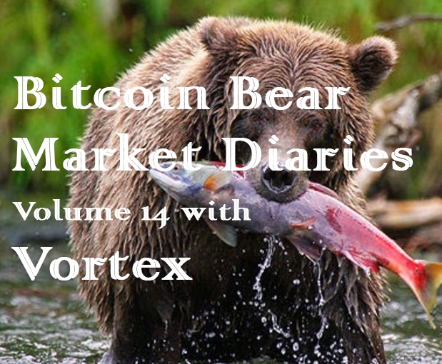 /bitcoin-bear-market-diaries-volume-14-with-vortex-b71c3c4aebf3 feature image